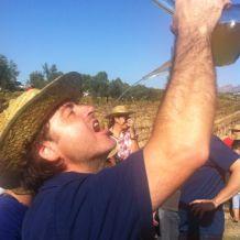 Winemaker 4